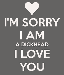 I'm Sorry I'm An Idiot Awesome I M Sorry Love