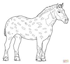Small Picture Percheron Horse coloring page Free Printable Coloring Pages