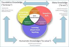 Three Domains Of Life Venn Diagram Scholarship Of Teaching And Learning Educateria