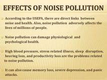 cause of noise pollution essay project managers write my paper cause of noise pollution essay