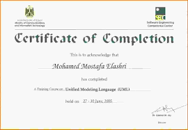 doc doc certificate of training template  certificate of training template 7 certificate of training