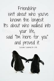How Adorable Is This Quotes Pinterest Friendship Quotes Cool Adorable Friend Quotes