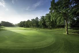 tranquil dawn oak park golf club surrey england