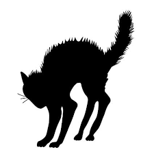 halloween black cat. Beautiful Halloween Halloween Black Cat Silhouette  Vinyl Wall Art Decal For Homes  Offices For Amazoncom