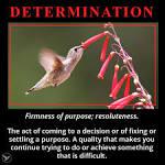 firmness of purpose