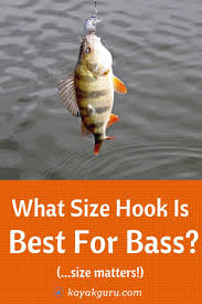 What Size Of Hook For Bass Fishing Guide To The Best For