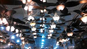 Menards Kitchen Ceiling Lights Modest Menards Ceiling Fans For Various Rooms To Add Comfort At