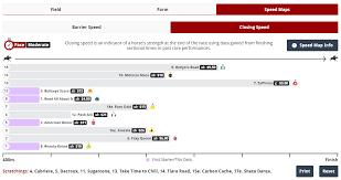 Horse Racing Speed Maps By Racenet