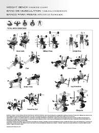 Gold S Gym Gs 2500 Exercise Chart Download Gs 2500 Golds Gym Exercise Manual Rasserisraels Blog