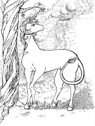 Realistic Unicorn Coloring Pages At Getdrawingscom Free For