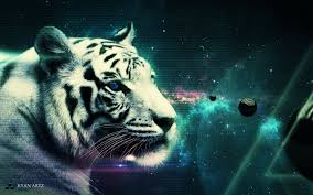 white tiger wallpapers 25 1920 x 1200