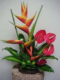 basic floral design ideas to consider when using tropical flowers