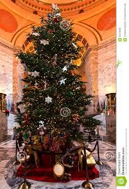 Christmas Lights In Olympia Washington Cristmas Tree Olympia Wa December 6 2015 The Main