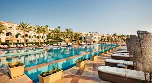 Картинки по запросу the beach in sunrise arabian beach resort sharm el sheikh