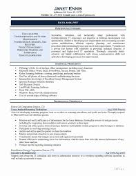 28 Beautiful Resume Format For Data Analyst Resume Templates