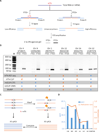 Single Base Mapping Of M6a By An Antibody Independent Method