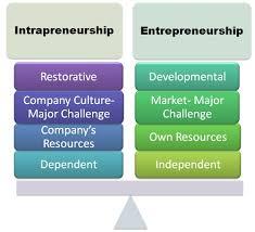 Hasil gambar untuk gambar yang cocok untuk entrepreneur dan intrapreneur