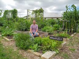 kurt and his early summer garden plot at austin s sunshine community garden