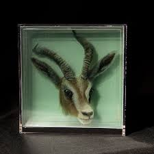 3d paintings on layers of glass by yosman botero 02 3d paintings of animals on layers