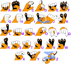 American Sign Language Fingerspelling Chart 11 Genuine Chart For Sign Language Alphabet