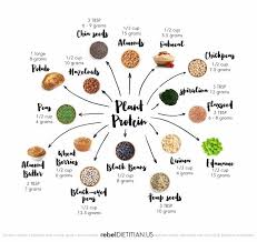 Health Balance In 2019 Protein Chart Plant Protein