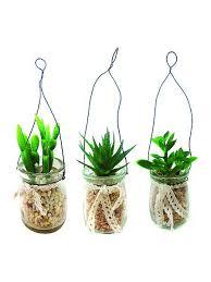 <b>Растение</b> суккулентное в стеклянной банке <b>Gardman</b> 2824643 в ...
