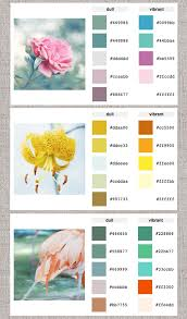 web help color palette generator home great way to come up with new paint colors and inspiration