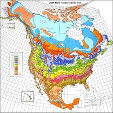 understanding world hardiness zones plant hardiness zones in other regions