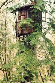 treehouse furniture ideas. Images About Tree House On Pinterest Treehouse Houses And Forts. Front Porch Furniture Ideas. Ideas I