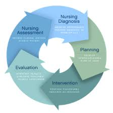 critical thinking model in nursing and any relevant critical thinking model in nursing and any relevant information that influence