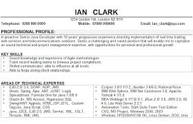 example of good cv layout software developer cv sample