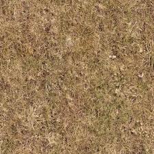 dirt grass texture seamless. HR Full Resolution Preview Demo Textures - NATURE ELEMENTS VEGETATION Dry Grass Texture Seamless 12934 Dirt H
