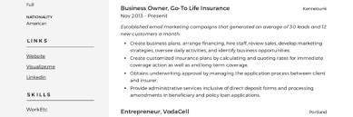 Small Business Owner Resume Writing Guide Resumeviking Com