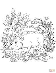 Coloring Pages Forest Animals Forest Animals Coloring Pages Forest Animals Coloring Book Free