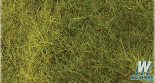 wild grass texture. Heki - Wild Grass Pad 11 X 5-1/2\ Wild Grass Texture