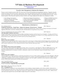 business to business s resume samples of resumes business development resume senior business development manager flk9