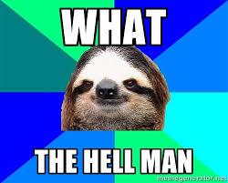 What The hell man - Socially Lazy Sloth | Meme Generator via Relatably.com
