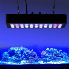 com beamnova dimmable 180w led aquarium light lighting full spectrum for fish freshwater and r c tank blue and white lps sps pet