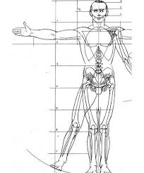 Armature Wire Gauge Chart Creating A Figure Armature For Sculpture Armature