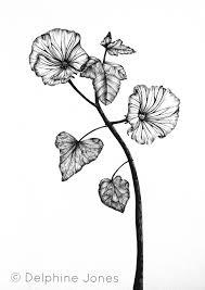 Botanical Design By Delphine Jones