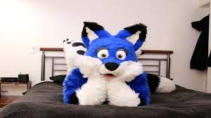 furries images furry wallpapers hd wallpaper and background photos