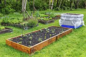Small Picture Setting Up A Vegetable Garden Home Decorating Interior Design