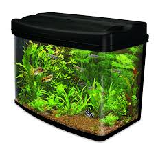 Cool Aquariums For Sale Amazoncouk Aquariums Glass Aquariums Plastic Aquariums Fish