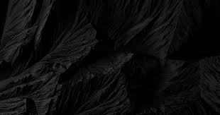 black vii project type