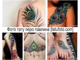 фото тату перо павлина примеры готовых рисунков значение эскизы