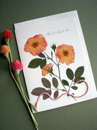 Peach Drift Roses pressed flowers card with by FlatFlowerDesigns. Sure to  make your mom