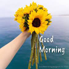 flowers good morning images beautiful