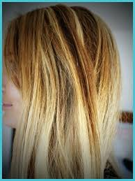 Low Light Hair Color Shopngo Co