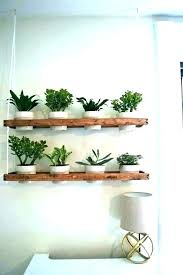 hanging plant pots wall flower holders indoor wall plant holders hanging plant pots indoor indoor hanging hanging plant