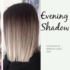 Evening Shadow Cool Toned Colormelt Ash